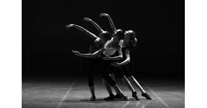 Procuramos bailarinas/os para Nova Revista